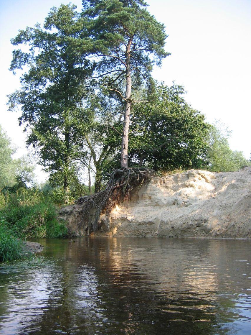 Kano Twente
